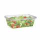 Rectangular Containers  - Salad